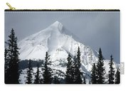 Sugar Icing Mountain Top Carry-all Pouch