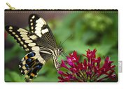Swallowtail Butterfly  Carry-all Pouch