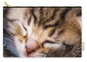 Sweet Small Kitten  Carry-all Pouch