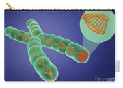 Telomere, Illustration Carry-all Pouch