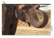 Temple Elephants Maharaja's Palace India Mysore Carry-all Pouch