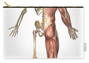 The Human Skeleton And Muscular System Carry-all Pouch