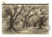 The Lane Sepia Carry-all Pouch by Steve Harrington