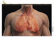 The Respiratory And Cardiovascular Carry-all Pouch