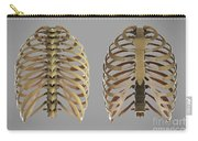 Thoracic Cage Carry-all Pouch