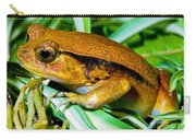 Tomato Frog Carry-all Pouch