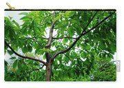 Trees In A Park, Adams Park, Wheaton Carry-all Pouch
