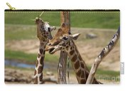 Two Reticulated Giraffes  - Giraffa Camelopardalis Carry-all Pouch