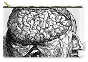 Vesalius: Brain, 1543 Carry-all Pouch