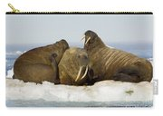 Walruses Resting On Ice Floe Carry-all Pouch