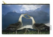 Waved Albatross Courtship Dance Carry-all Pouch