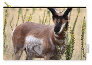 Where The Antelope Play Carry-all Pouch