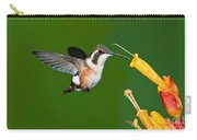 White-bellied Woodstar Carry-all Pouch
