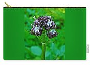 Wild Mint On Great Glacier Trail In Glacier National Park-british Columbia Carry-all Pouch