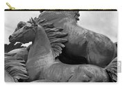 Wild Mustang Statue Carry-all Pouch