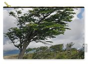 Wind-bent Tree In Tierra Del Fuego Carry-all Pouch