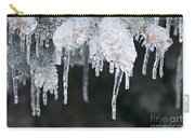 Winter Branches In Ice Carry-all Pouch