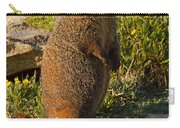 Yellow Bellied Marmot On Alert In  Rocky Mountain National Park Carry-all Pouch