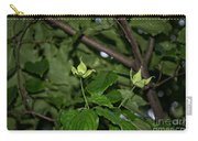 Forest Hill Gardens In Queens Carry-all Pouch