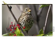 Fox Sparrow Carry-all Pouch