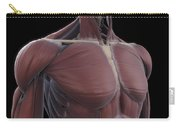 Muscles Of The Upper Body Carry-all Pouch
