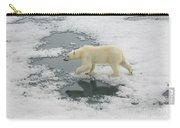 Polar Bear Crossing Ice Floe Carry-all Pouch
