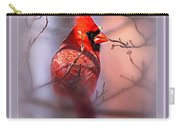 105865-006 - Cardinal-fb Carry-all Pouch