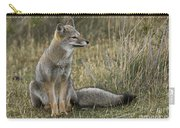 Patagonia Grey Fox Carry-all Pouch