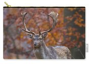 110221p135 Carry-all Pouch