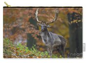 110221p136 Carry-all Pouch