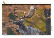 110221p137 Carry-all Pouch