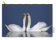 110307p052 Carry-all Pouch