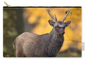 110307p073 Carry-all Pouch