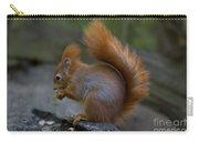 110307p078 Carry-all Pouch