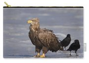 110613p227 Carry-all Pouch