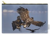 110613p229 Carry-all Pouch
