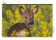 110714p139 Carry-all Pouch