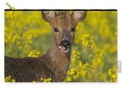 110714p140 Carry-all Pouch