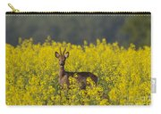 110714p143 Carry-all Pouch