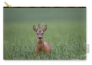 110714p319 Carry-all Pouch