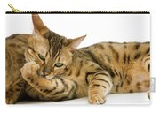Bengal Brown Spotted Tabby Carry-all Pouch