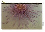 Cancer Cell Carry-all Pouch
