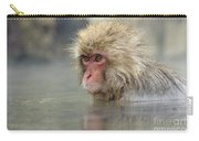 Snow Monkeys Carry-all Pouch