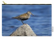 121213p018 Carry-all Pouch
