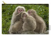 Snow Monkey, Japan Carry-all Pouch