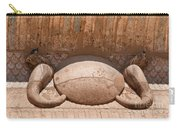 Edfu Carry-all Pouch