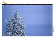 140303a-12 Winter Blues Carry-all Pouch