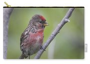 Common Redpoll Carry-all Pouch