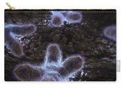 Human Chromosomes Carry-all Pouch