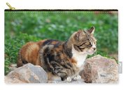 Cat In Hydra Island Carry-all Pouch